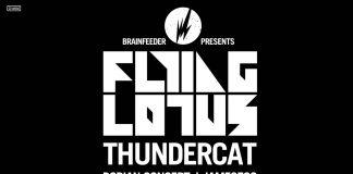 Thundercat i Flying Lotus na Brainfeeder Showcase. Znamy czasówkę