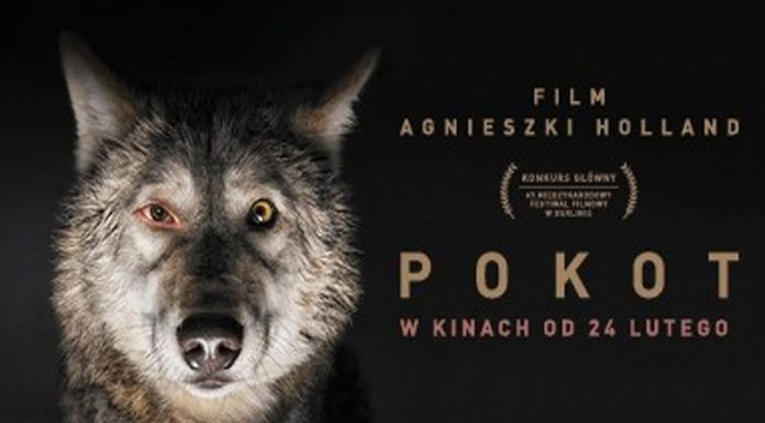 Pokot Agnieszki Holland w norweskich kinach