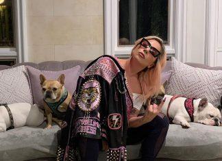 Lady Gaga przekazała bardzo smutną wiadomość. Fani w rozpaczy